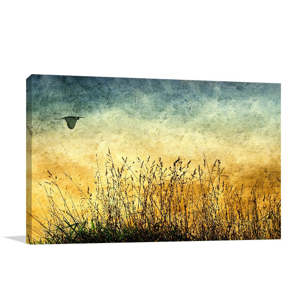Fields Vintage Prints Canvas