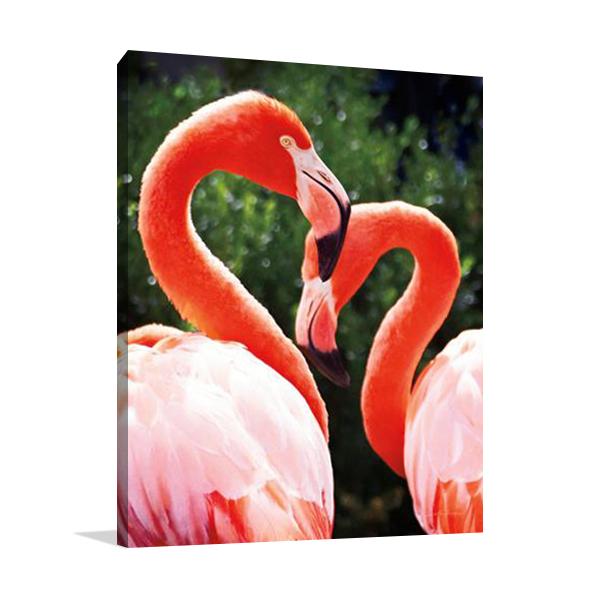 Flamingo II Wall Art Print