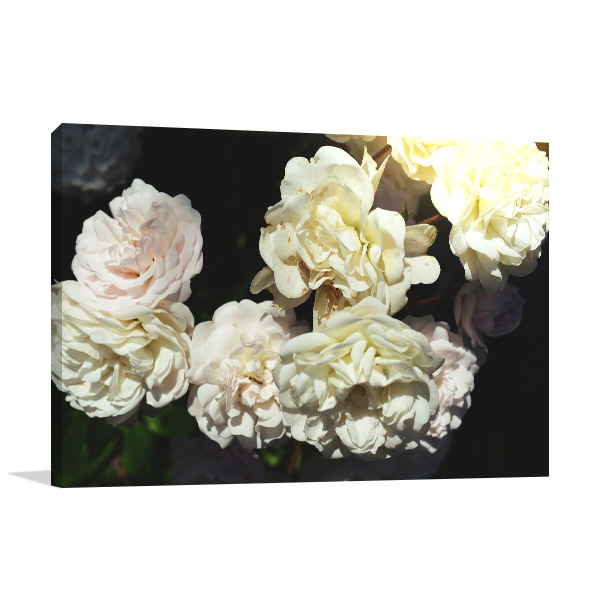 Floral Composition Wall Art Photo Print