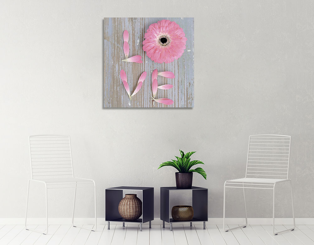 Pink Square Wall Canvas Print