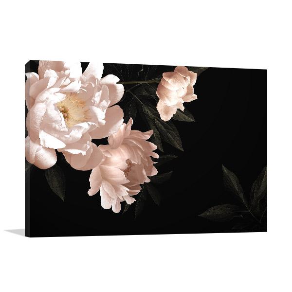 Flowers in Dark Background Canvas Prints