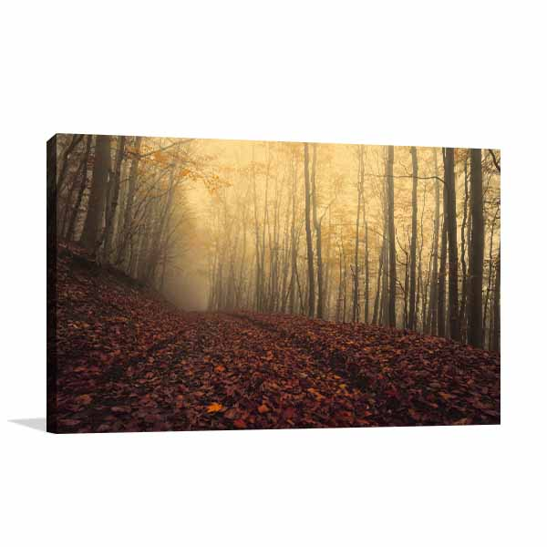 Foggy Autumn Prints Canvas