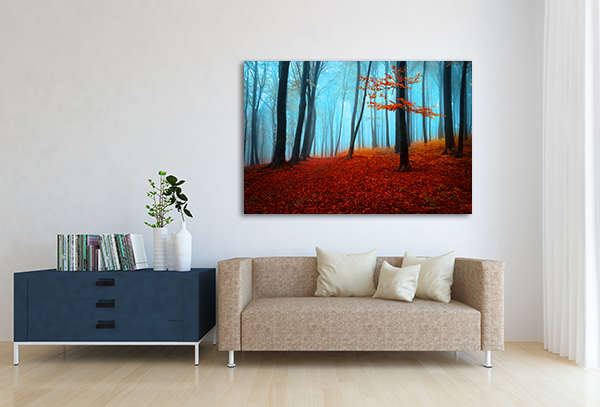 Forest Autumn Day Print Artwork