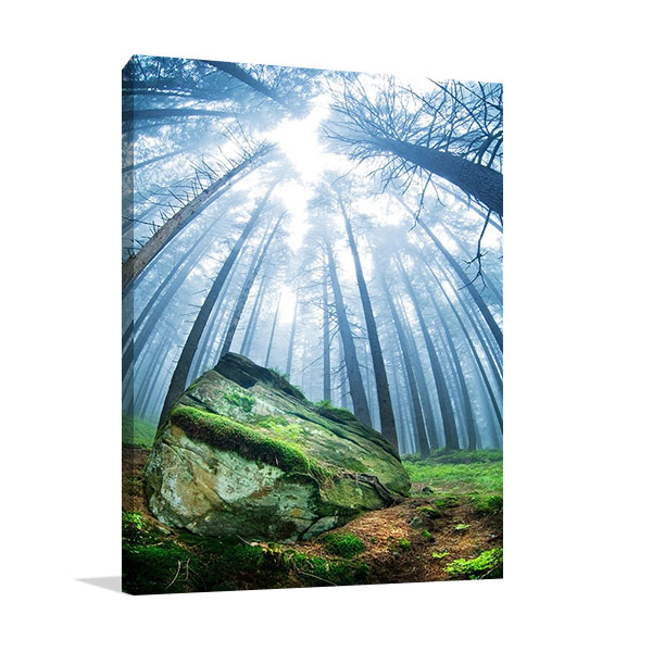 Forest Moss Grass Print on Canvas