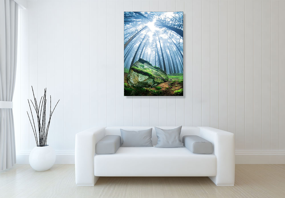 Nature Photography Print on Canvas