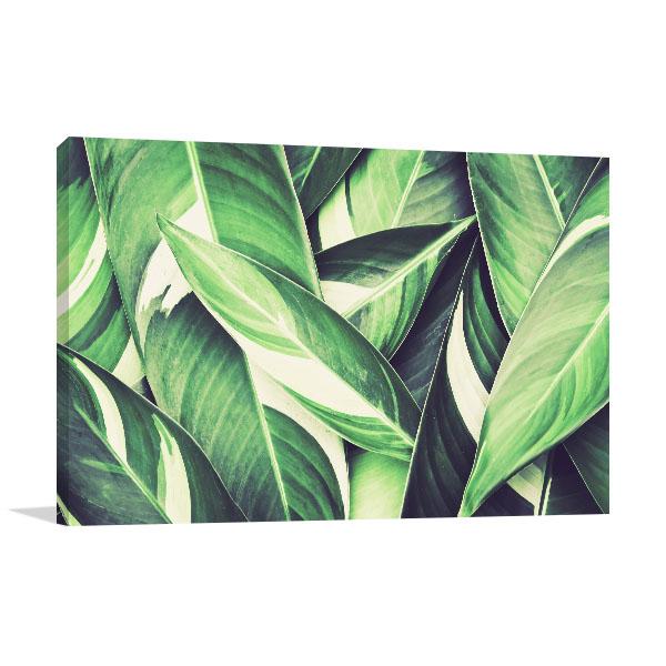 Fresh Tropical Green Leaves Canvas Art Prints