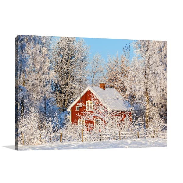 Frost and Snow Canvas Art Prints