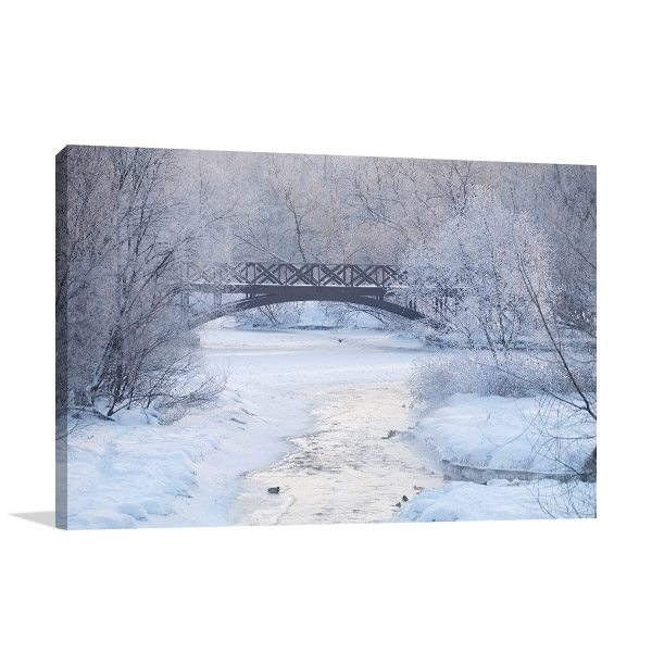 Frosty Morning Art Prints
