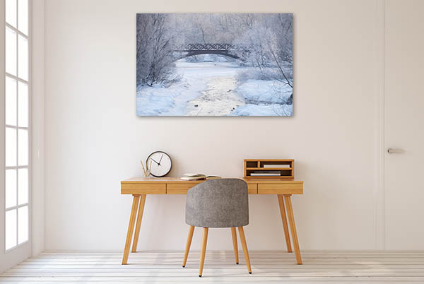 Frosty Morning Canvas Art