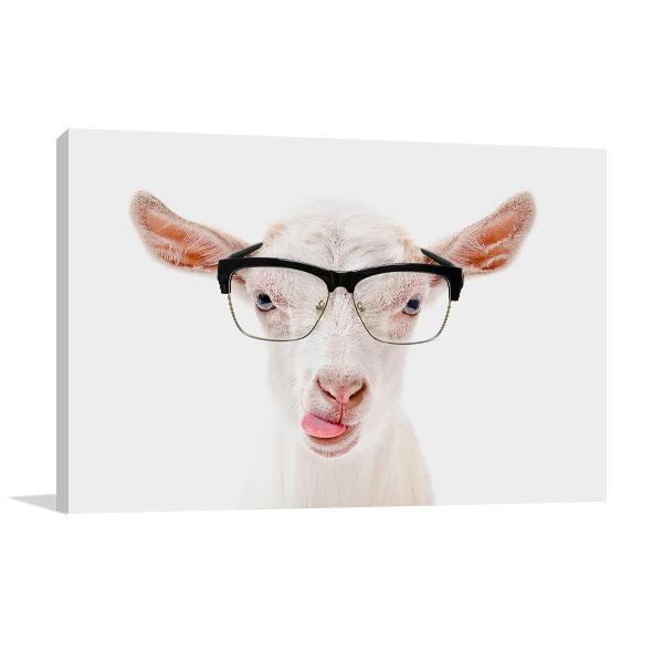 Goat In Glasses Canvas Art