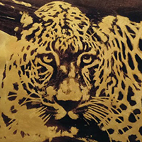 Gold-Coloured Wall Art For Sale in Australia