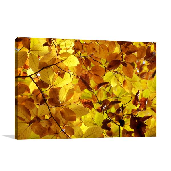 Golden Leaf Prints Canvas