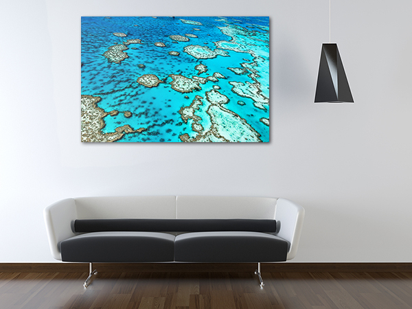 Great Barrier Reef Art Print on the wall