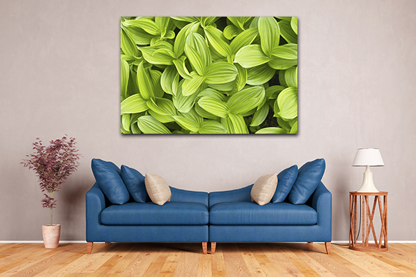 Green Leaves Prints Canvas
