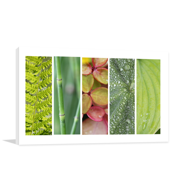 Green Nature Canvas Art Prints