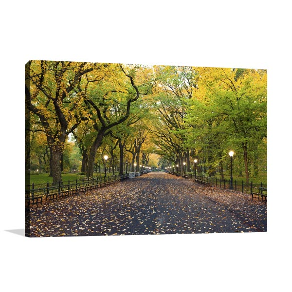 Greeny Central Park Canvas Art Prints