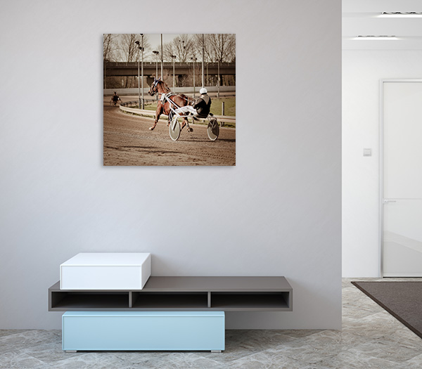 Harness Racing Horse Canvas Prints