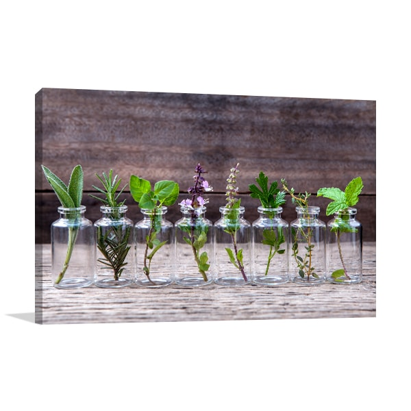 Herbs in Bottle Canvas Art Prints