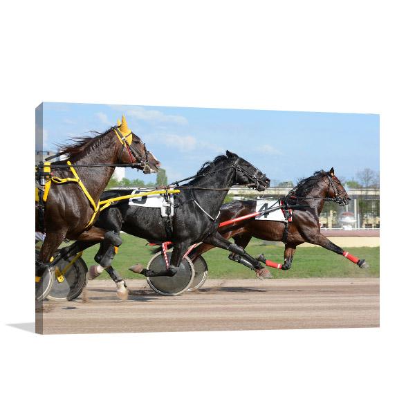 Horses Trotter Canvas Art Prints
