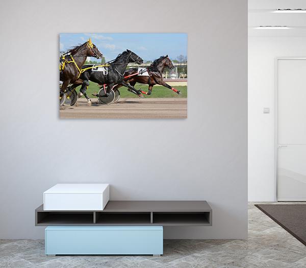 Horses Trotter Prints Canvas