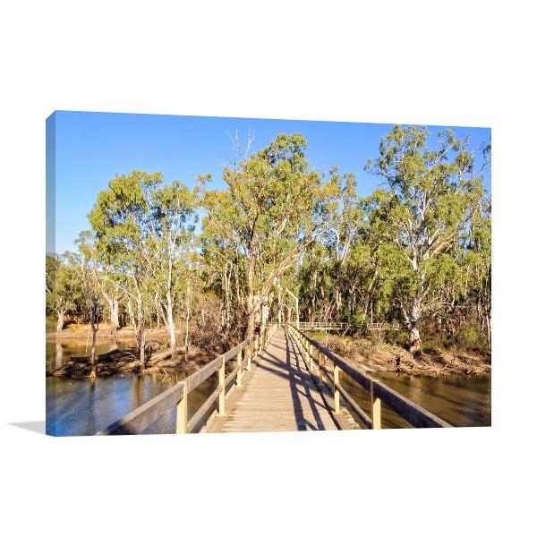 Horseshoe Lagoon Wetland Canvas Print Moama NSW Art Picture