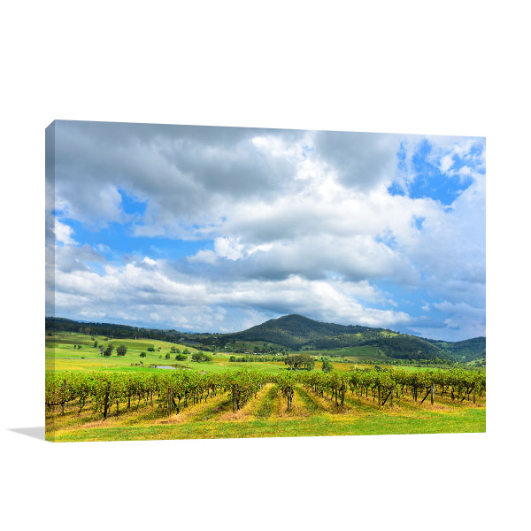 Hunter Valley Art Print Green Vineyards