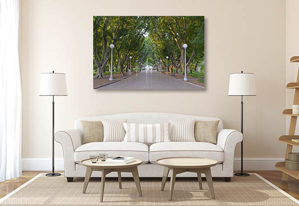 Hyde Park Art Print Sydney Australia Prints Canvas