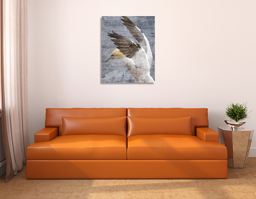 Animal Portrait Art Print on Canvas
