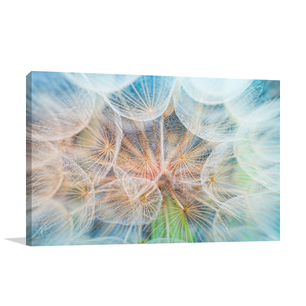 Inside Dandelion Print Artwork