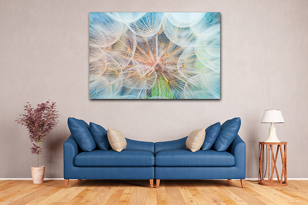 Inside Dandelion Artwork