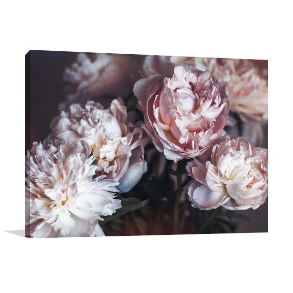 Isolated Floral Canvas Art Prints