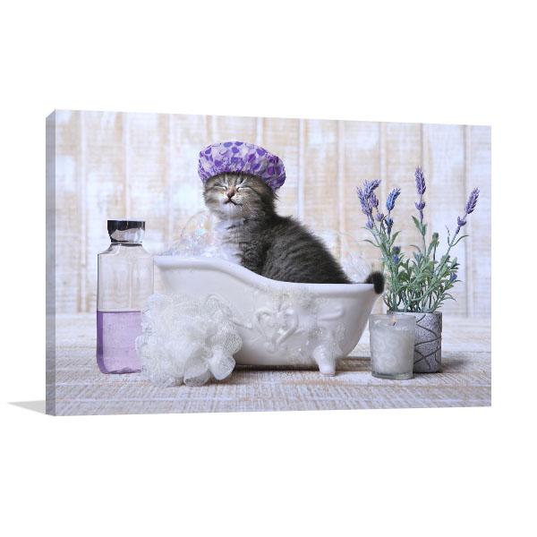 Kitten In A Bathtub Art Prints