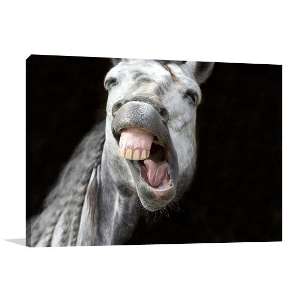 Laughing Horse Artwork