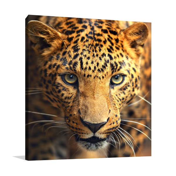 Leopard Portrait Art Print Canvas Art Prints