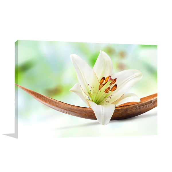 Lily on Coco Palm Wall Art