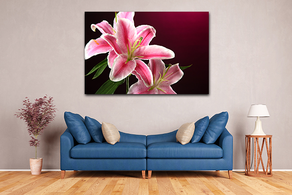 Lily Pink Prints Canvas