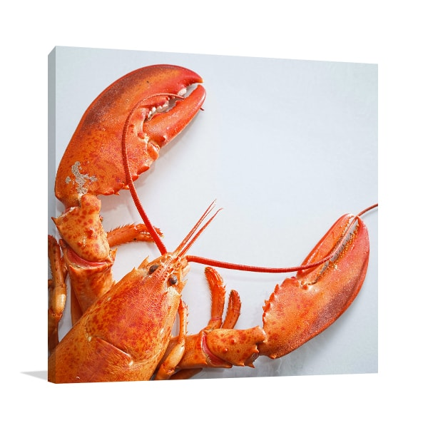 Lobster Canvas Art Prints