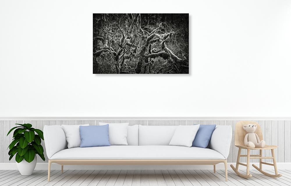 Black and White Print Canvas