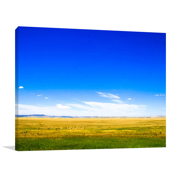 Meadow Canberra Prints Canvas