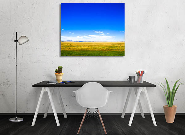 Meadow Canberra Canvas Prints