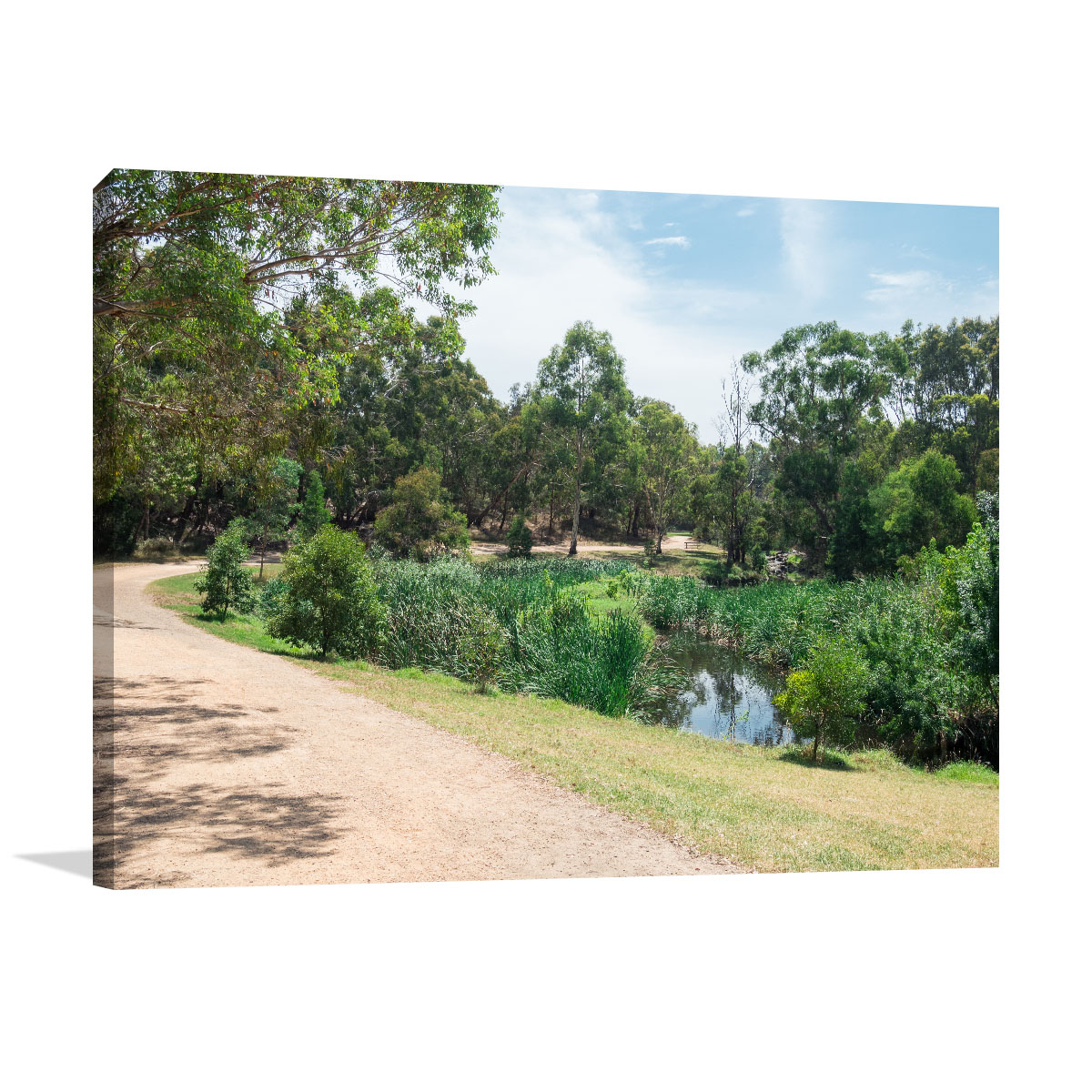 Melbourne Art Print Burwood Gardiners Creek