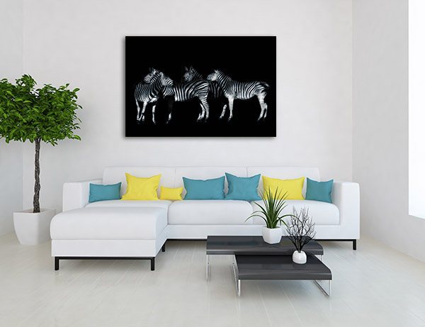 Monochrome Wildlife Portrait Canvas Prints