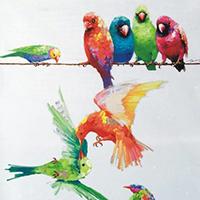 Multi-Coloured Wall Art For Sale in Australia