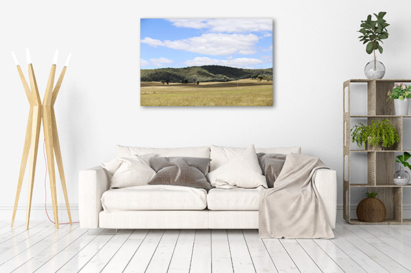 New South Wales Canvas Print Mudgee Rural Wall Picture