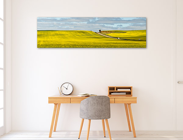 New South Wales Wall Art Print Canola Hay Picture Canvas