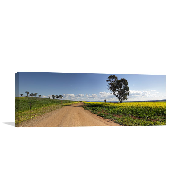 New South Wales Wall Art Print Canowindra Picture Artwork