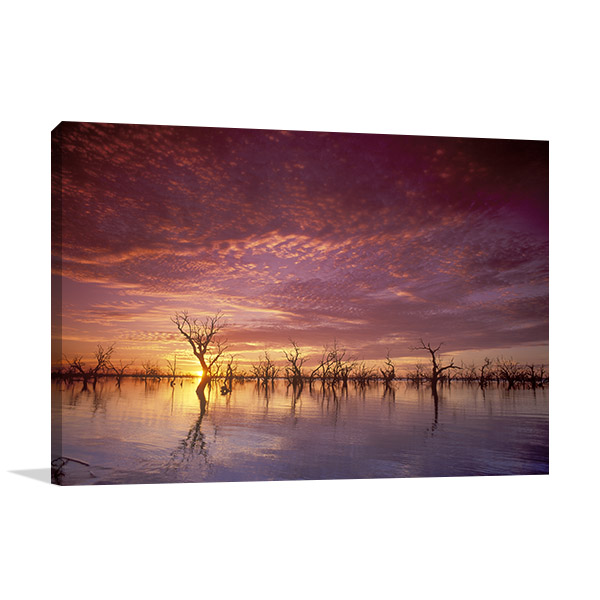 New South Wales Wall Print Menindee Lakes Art Picture