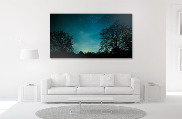 Night in Forest Prints Canvas