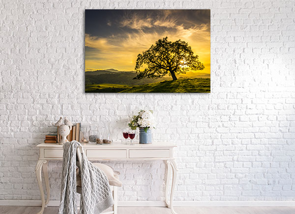 Oak Tree Sunset Canvas Prints