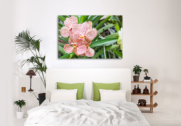 Orchid Flower Print Artwork